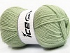 Favourite Wool Light Green