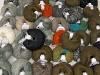 Mixed Lot Winter Yarns
