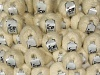 Mixed Lot Mohair - Wool Blends