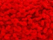 Chenille Loop Red