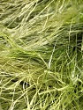 Fiber Content 100% Polyester, Brand ICE, Green Shades, Yarn Thickness 6 SuperBulky  Bulky, Roving, fnt2-51308