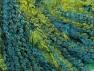 Contenido de fibra 40% Acrílico, 40% Lana, 20% Poliamida, Turquoise, Brand ICE, Green, fnt2-63045
